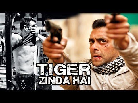 Xxx Mp4 NO 6 PACK Abs For Salman Khan In Tiger Zinda Hai 3gp Sex