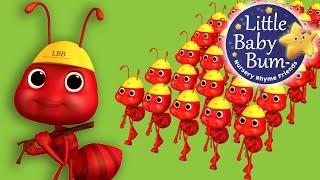 Ants Go Marching | Nursery Rhymes | By LittleBabyBum!