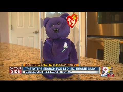 Beanie Babies have Tri-Staters on the search
