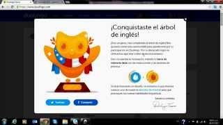 Que Pasa Cuando Terminas Duolingo
