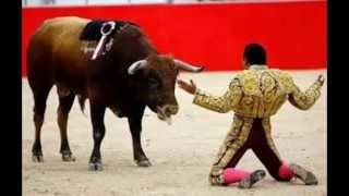 The horrible truth about bullfighting