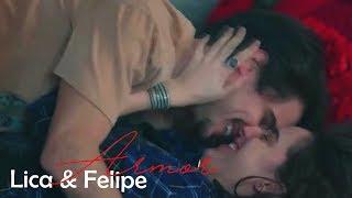 Lica & Felipe - Armor