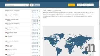 How to check DNS  propagation status ?