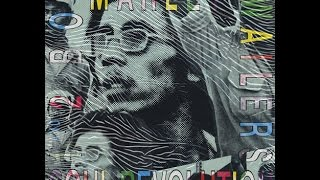 The Wailers | Soul Revolution album completo