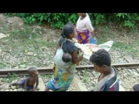 Viaje Madagascar Tren de la selva