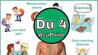 Du 4 Acupuncture Point
