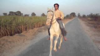 Umar farooq horse riding
