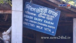 Milk Village খুলনা ও সাতক্ষীরার সীমান্তে 'দুধ গ্রাম' on News24