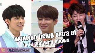 Seventeen's Wonwoo Being Extra Af In Tv And Web Shows