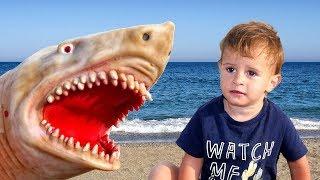 Baby Shark | Kids Songs and Nursery Rhymes | Animal Songs from LETSGOMARTIN