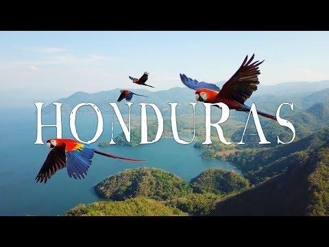 Xxx Mp4 Honduras Travel Video WANDR Roatan Copan Lake Yojoa Macaws And MORE 3gp Sex
