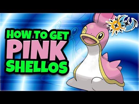 Xxx Mp4 How To Get West Sea Shellos Pink Shellos In Pokemon Ultra Sun Ultra Moon 3gp Sex