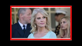News 24/7-Kellyanne conway says she tried to make sexual harassment a problem months ago.