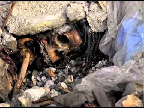 MIGUEL DE LA FUENTE ZONA CALIENTE HAITI TERREMOTO 2010