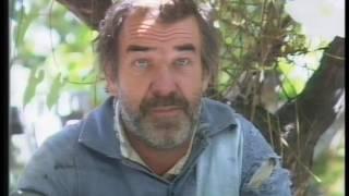 """""""Historias de la Argentina secreta"""": agonía y resurrección de Berisso, 1991"""