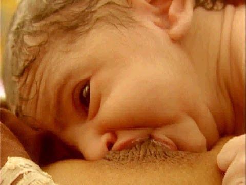 Xxx Mp4 Breast Crawl Initiation Of Breastfeeding 3gp Sex