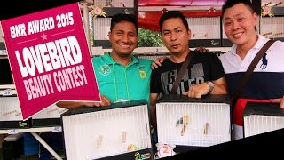 KONTES BURUNG : BnR Award 2015 - Hulk Milik Robby Thera Bird Farm Terbaik Di Lovebird Beauty Contest