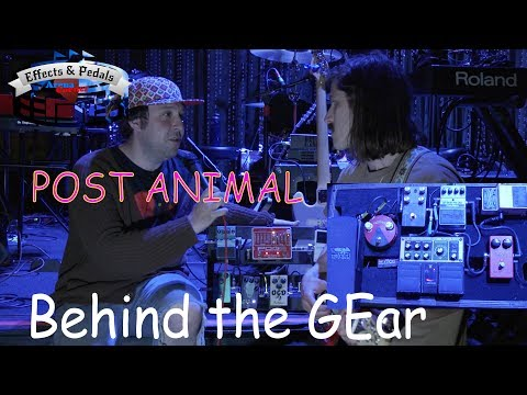 Post Animal Behind the Gear Effects & Pedals Arena Corner