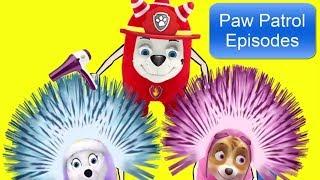 HAIR ERECTED - VAMPIRE Monster | PAW Patrol - Episode 6 | Cartoon for Kids