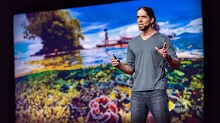 Could fish social networks help us save coral reefs?   Mike Gil