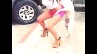 mulher dança funk com cachorro