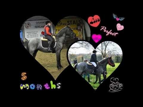 my horse xxx :) Meggie