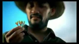 Dji Sam Soe - Tembakau dan Kuda