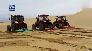 Desert turns into oasis: China