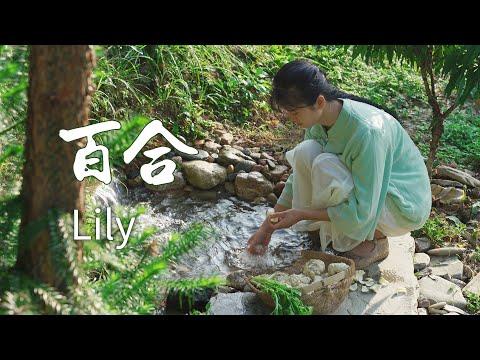 挖一筐百合,做一� 百合汤,独特的营养美味 Lily makes all kinds of delicious food 【杨大碗】