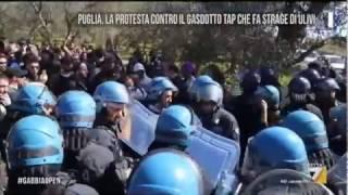 SALENTO in rivolta contro il gasdotto TAP che fa STRAGE di ULIVI.