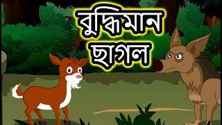 বুদ্ধিমান ছাগল   Panchatantra Moral Stories for Kids in Bangla   Maha Cartoon TV Bangla