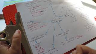 Aprendizajes esperados ¿Cómo desarrollar un tema?
