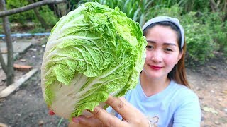 Yummy Chinese Cabbage Rolling Shrimp - Rolling Cooking - Cooking With Sros