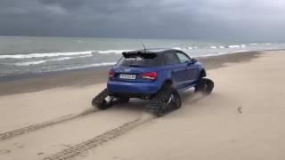 Audi S1 cingoli (Miki devil )