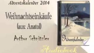 Weihnachtseinkäufe aus Anatol  Arthur Schnitzler Audiobook
