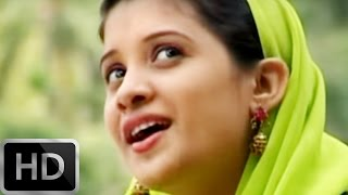 Manathu Pongipaarum |  new song mapila album