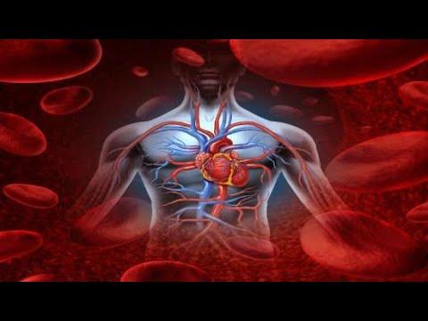 Xxx Mp4 علامات تدل على ضعف الدورة الدموية 3gp Sex