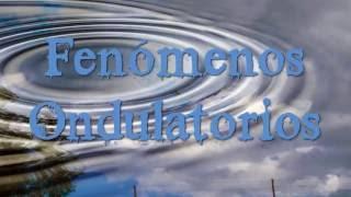 Fenómenos Ondulatorios (Reflexión, Refracción, Interferencia, Difracción y Polarización)