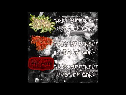 Slaughter Circle - Three Different Kinds of Gore split FULL EP (2014 - Gorenoise / Goregrind)