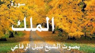 سورة الملك بصوت الشيخ نبيل الرفاعي