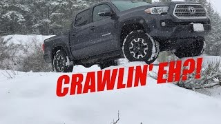 CRAWL CONTROL WORKED! | 2017 Tacoma TRD OffRoad