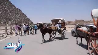 صدى البلد |مواطنون يحتفلون بثالث أيام عيد الفطر بركوب الخيال والجمال امام اهرامات الجيزة