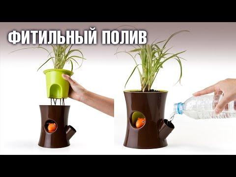 Автополив для цветка своими руками 219