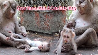 How Great Mama Mala Nursing And Feeding Her Pretty Baby Pigtail Maly  ? PTM 1208
