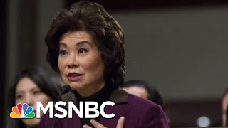Chao Corruption Shocking Even For Scandal-Plagued Donald Trump Cabinet | Rachel Maddow | MSNBC