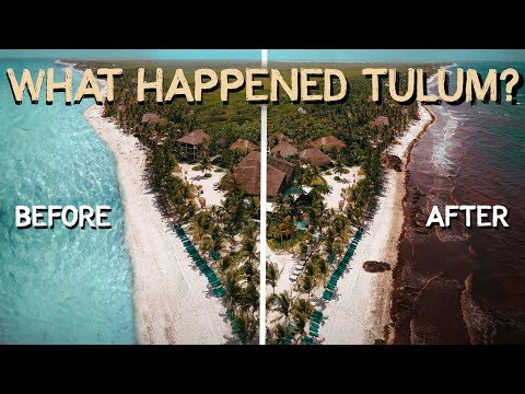 An Honest Review Of TULUM Worth The Hype