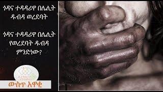 EthiopikaLink The insider News November 04 2017 Part 1