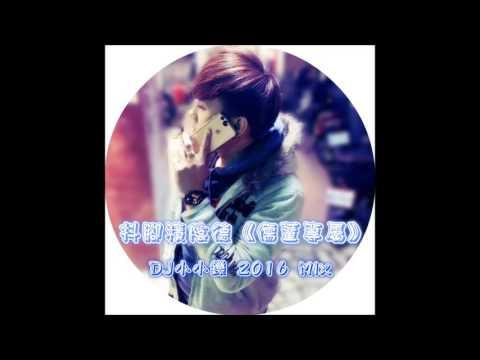 抖腳積陰德【儒董專屬】DJ小小鑠 2016 Mix