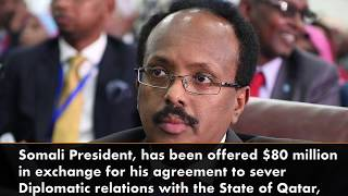 Somalia turns down $80m from Saudi Arabia to cut ties with Qatar