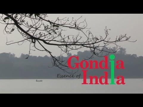 Gondia Essence of India
